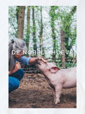 Nobele hoeven pig